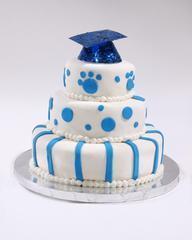 mini 3 layer cake medium-302