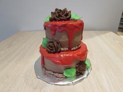 mini tiered cake with red ganache 1 medium-v1517354267